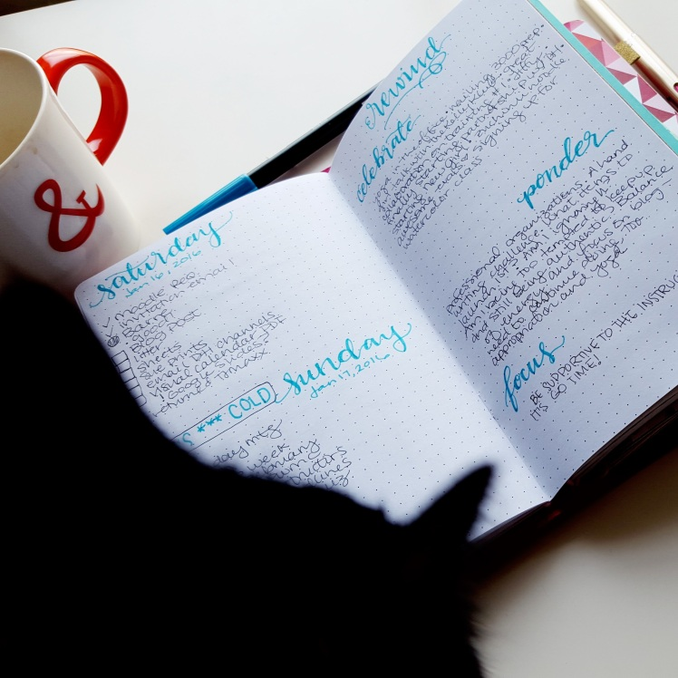 When do you go paper and when do you go digital with your bullet journal? (guest-starring my cat) // www.prettyprintsandpaper.com